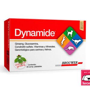 DYNAMIDE  (gerontologico)